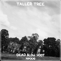 Taller Tree