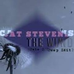 Cat Stevens - The Wind (Pete O'Deep 2020 Edit) FREE DL