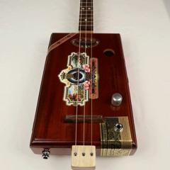 The Ashton 3 String Cigar Box Guitar CBG #2172