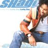 Hey Sexy Lady (Original Sting Intl. Mix) [feat. Sean Paul, Brian Gold & Tony Gold]