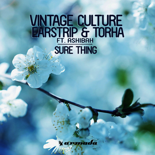 Vintage Culture, Earstrip & Torha feat. Ashibah - Sure Thing (Matvey Emerson Radio Edit)