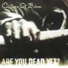 In Your Face (Album Version)