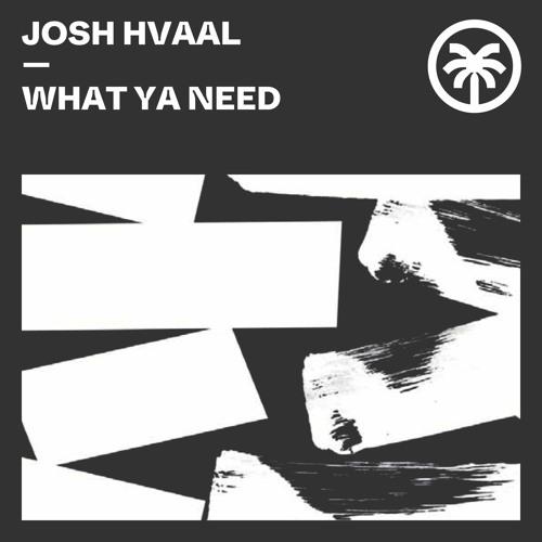 Josh Hvaal - What Ya Need