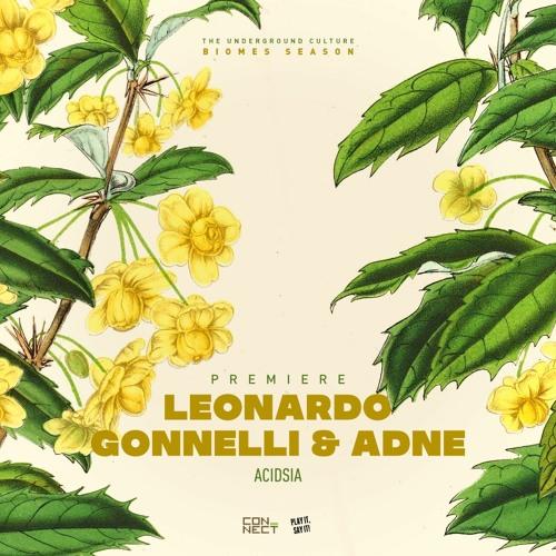PREMIERE: Leonardo Gonnelli & Adne - Acidsia (Original Mix) [Play It Say It]