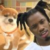 Denzel Curry Feeding His Dogs