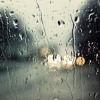 Relaxing Florida Rain Storm