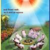 Download Samay Ka Panchhi Udta Jaye Mp3