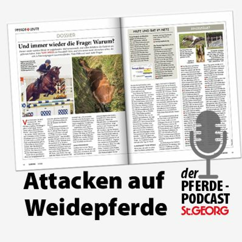 Podcast: Tote Weidepferde - der Fall Ragazza und eine engagierte Pferdefrau