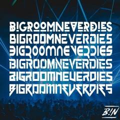 (Bigroom Mix) Bigroom Never Dies - B!N