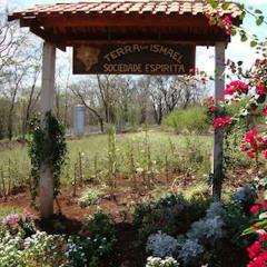 (10/04/20) Evangelho Terra de Ismael