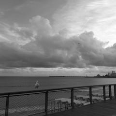 Nostalgia Bay