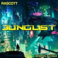 Junglist (Drum & Bass session A01S04)