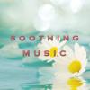 Tai Chi & Qi Gong (Asian Music)