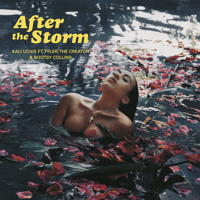 Kali Uchis - After The Storm (Ft. Tyler, The Creator & Bootsy Collins)