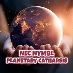 Nec Nymbl - Planetary Catharsis (Instrumental) $100
