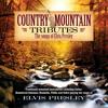 Love Me Tender (Country Mountain Tributes: Elvis Presley Album Version)