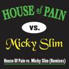Jump Around (House of Pain vs. Micky Slim Radio Edit)