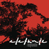 Volar Sin Alas (Album Version)