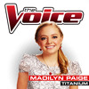 Titanium (The Voice Performance)
