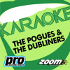 The Wild Rover [No Backing Vocals] (In The Style Of 'The Dubliners')