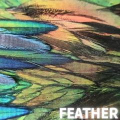Lucio Di Stefano - Feather