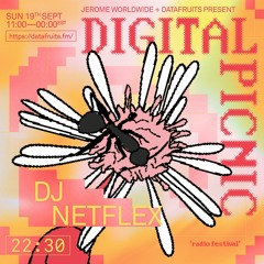 JEROME WORLDWIDE DIGITAL PICNIC - DJ NETFLEX