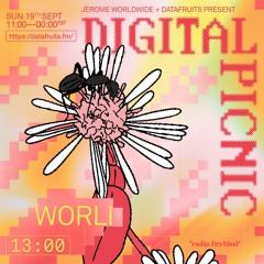 JEROME WORLDWIDE DIGITAL PICNIC - WORLI