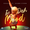 Download In Da Mood (feat. Shawn Storm) Mp3