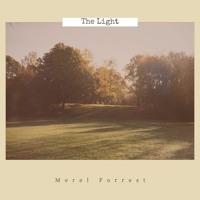 The Light - Merel Forrest (Original Song) | live & acoustic guitar version