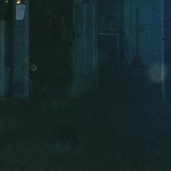 Burial - Shell Of Light (tembangswabunuh bootleg rmx)