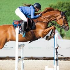 The Equestrian Mixtape