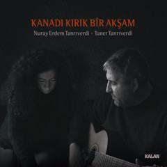 Dertli Türkü