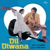 Kisi Se Dosti Karlo (Dil Diwana / Soundtrack Version)