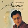 Tera Chehra Hai Aaeene Jaisa (Album Version)