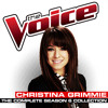 I Knew You Were Trouble (The Voice Performance)