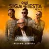 Que Siga La Fiesta (Remix)