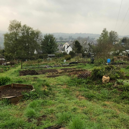 Allotment Rain 17 April 2020