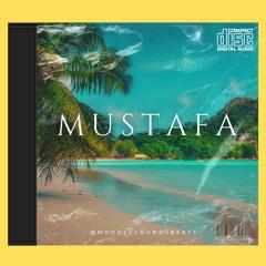 Afrobeat  MUSTAFA  Dancehall Afro Instrumental 2021 🌴
