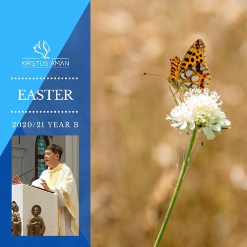 Daily Gospel Reflexions by Fr Michael Chua - Easter 2020/21
