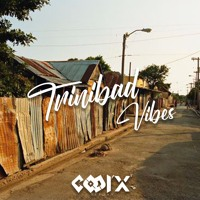 Dj CooL'X - TRINIBAD VIBES Artwork