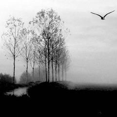 The Birdland's Edge