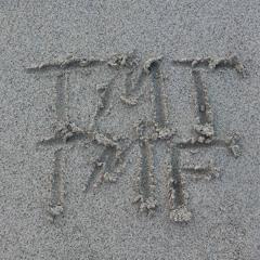 TMTTMF - V4CC1N3 (PR0D L1GHTH3LL)