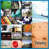 A Million Lights (Tree63 Album Version)