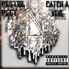 Download Catch A Vibe Mp3