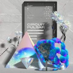 ℱirst Bl∞d - CircuitPulsar