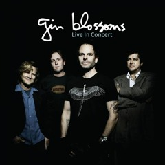 Gin Blossoms - Found Out About You (live)