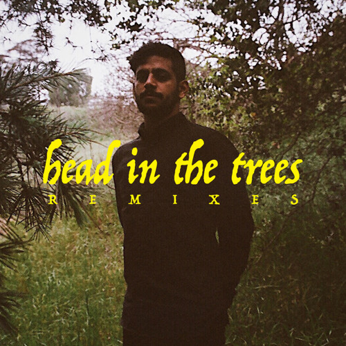 Head In The Trees (Justin Jay Remix)