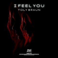 Toly Braun - I Feel You