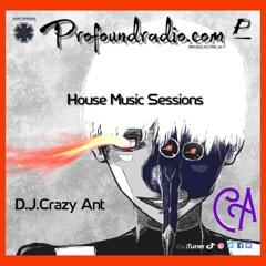 Profoundradio Mix #135 Tech House