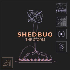 Shedbug - The Chase [MTROND010]